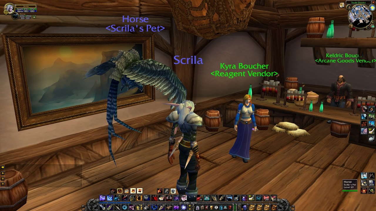 Stormwind Reagent Vendor Wow Classic Youtube