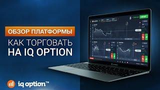 как торговать на IQ Option - Обзор платформы. IQ Option