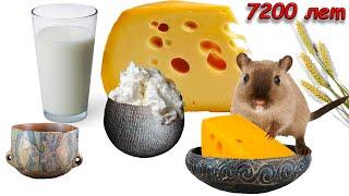 بيانات جديدة من أوائل إنتاج الجبن في الشمال الغربي من شبه جزيرة البلقان في العصر الحجري الحديث
