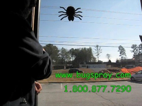 Attack Spider Video