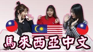 [語言] 台灣人能聽得懂馬來西亞中文嗎? l Cher is chercher ft. 愛莉莎莎 u0026 Korea Jou Tv