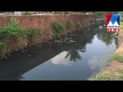 Kannur padannathode cleaning -special story      Manorama News