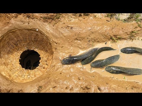 How To Make fish trap for fishing - freshwater Deep Hole fish Trap