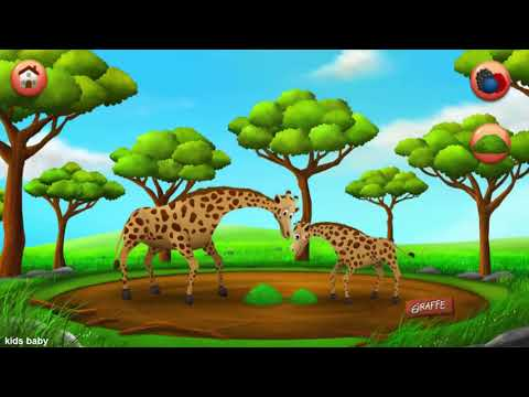 Compilation Animals Farm And Wild for Kids | English Class Animal Name And Sound  HD