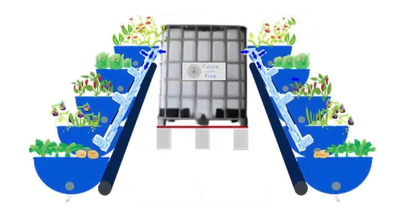 Barrel Aquaponics Animation Youtube