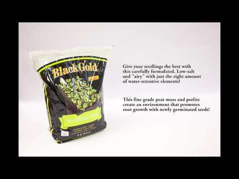 Black Gold Premium Soil & Amendments