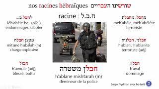 Video Racinehbl
