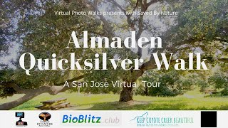 KCCB Session #4 Almaden Quicksilver Walk By Virtual Photo Walks with Saved By Nature & Bioblitz.club