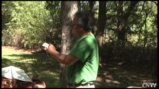 Cherokee Heritage Center Blowgun Making