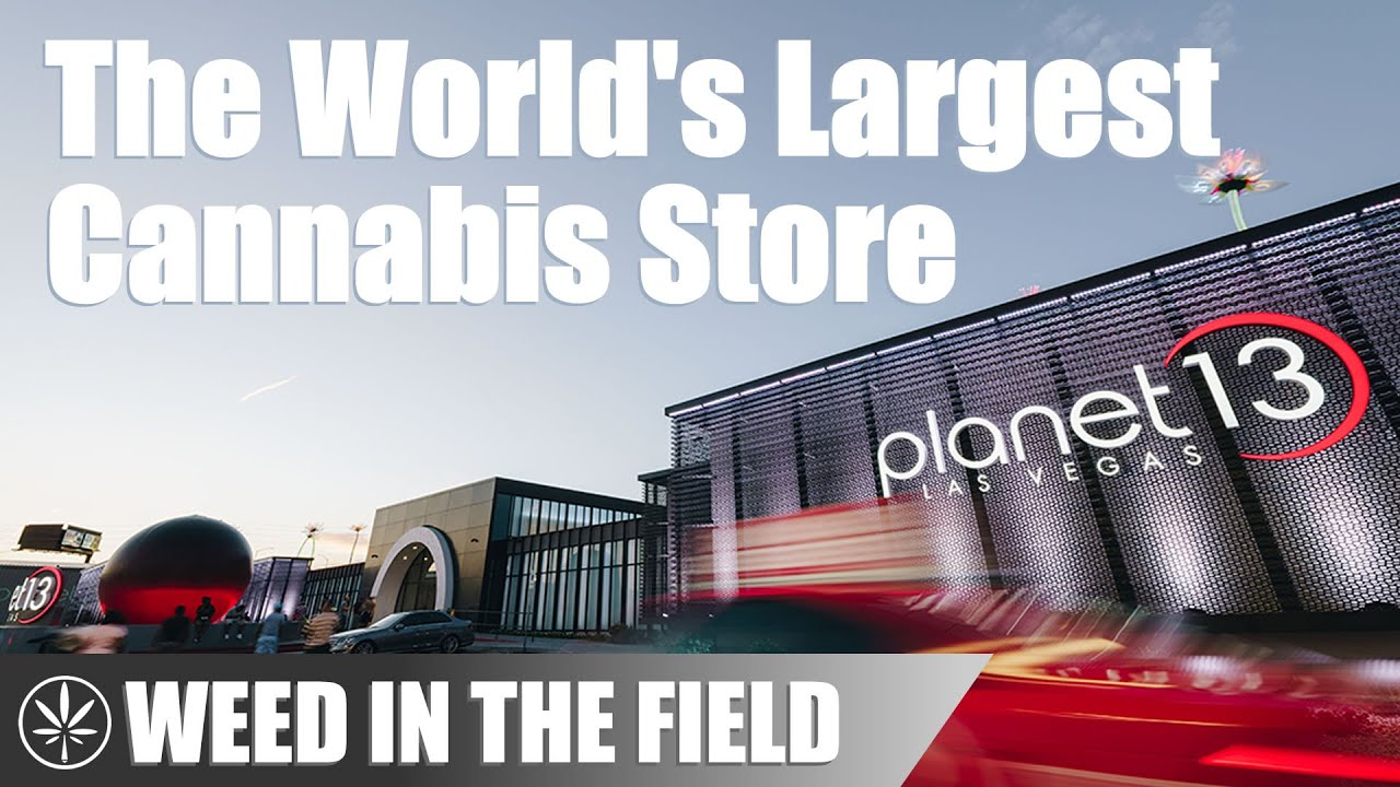 An Inside Look at the World's Largest Cannabis Dispensary