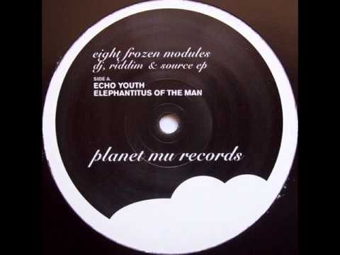 Eight Frozen Modules - Echoyouth