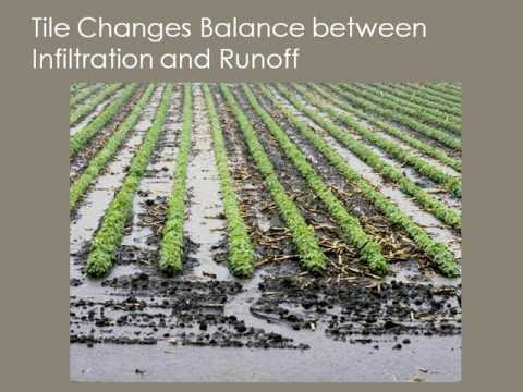 "Tile Drainage Webinar 2 - ""How Does Tile Impact Downstream Environments?"""