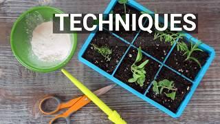 Plant Parenting: New Book!