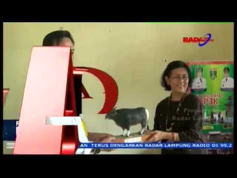 UPSUS SIWAB LAMPUNG TERBESAR SE SUMATERA