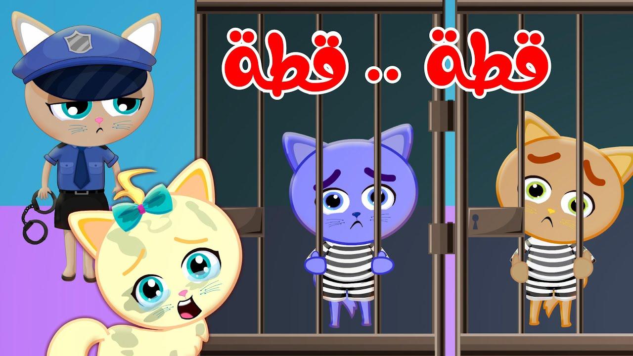 قطة قطة وأغاني قناة وناسة للأطفال #قطة #قناة #وناسة