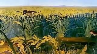 Το Θαυμαστό Βιβλίο της Φύσης - ep. 29 / To Thavmasto Vivlio tis Fisis / Great Book of Nature - GR thumbnail