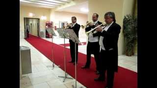 Ein Heldenleben-fanfare.Janacek philharmonic orchestra