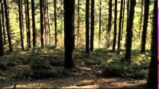 Terra Nova Saison 1 Episode 10