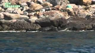 東京都尖閣諸島現地調査記録映像(2)
