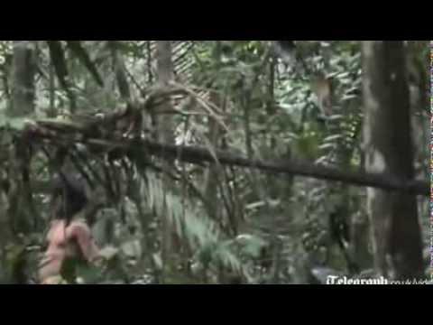Video hiếm về bộ lạc biệt lập trong rừng Amazon