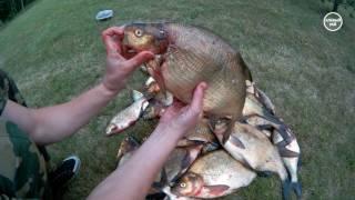 Крутая рыбалка в Беларуси на Струсто Витебской области. Отчет и предположение - почему!