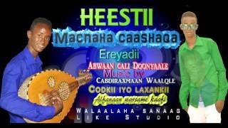 Video Hees Cusub Macnaha  caashaqa Warsame kaafi 2017 Walaalaha sanaag download MP3, 3GP, MP4, WEBM, AVI, FLV Juni 2018