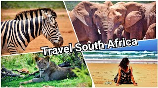 South Africa Travel Vlog- Part 1| Safari |Knysnacity|