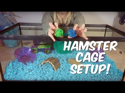 HOW TO SET UP A HAMSTER CAGE!