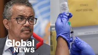 Coronavirus: WHO gives update on COVID-19 vaccine trials as global cases pass 20 million | FULL