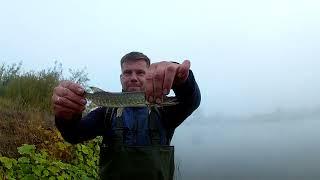 Рыбалка на спиннинг 2021 окунь хариус щука голавль