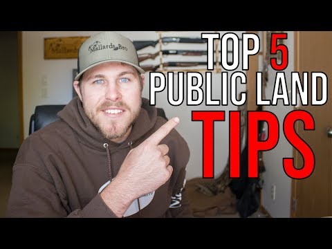 Top 5 Tips For Public Land Duck Hunting