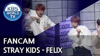 [FOCUSED] Stray Kids' FELIX - I am YOU [Music Bank / 2018.10.26]