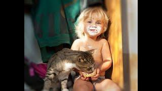Смешные Видео Приколы с Котами. Смешные Коты до Слез. Смешные Животные 2019.#26