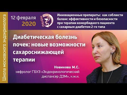 Новикова М.С. Диабетическая болезнь почек: новые возможности сахароснижающей терапии.