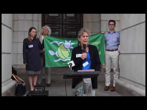 Environmental groups rally against Biomass bill