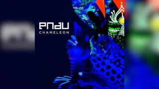PNAU | Chameleon
