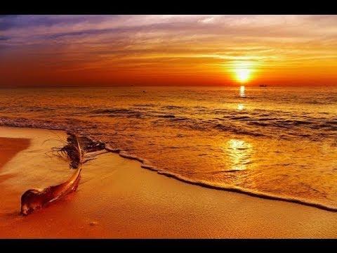 🔴 Relaxing Sleep Music 247: Meditation Music, Deep Sleeping Music, Peaceful Sleep