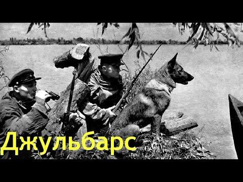 Джульбарс / Собака с Памира (1935) в хорошем качестве