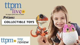 Win Collectible Toys on #TTPMLIVE like Hatchimals, Fingerlings, Pomsies and more!