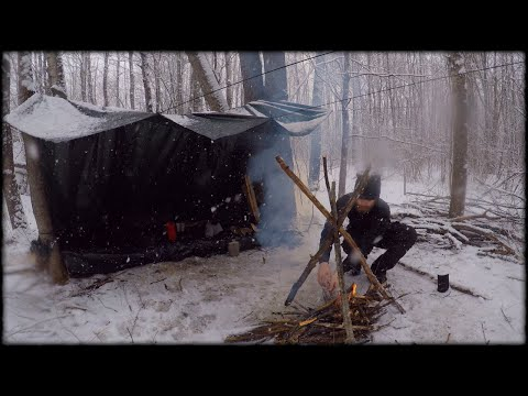 WINTER BUSHCRAFT - Solo Camping Overnight in Snow Storm! (Building Shelter, Fire \u0026 Cooking Steak)