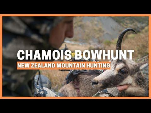 NEW ZEALAND BOWHUNTING ALPINE CHAMOIS
