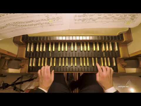 Pagine d'Organo 2019<br><br>Rassegna organisti...