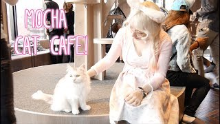Video MoCHA Cat Cafe! - Violet LeBeaux download MP3, 3GP, MP4, WEBM, AVI, FLV September 2018