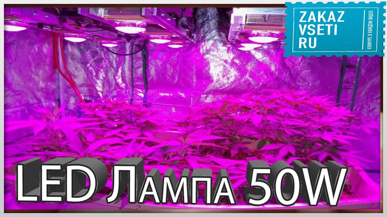 Ультрафиолетовая лампа для марихуаны анализ на коноплю
