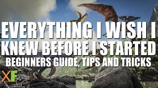 Everything I Wish I Knew Before I Started Ark: Survival Evolved: 2019 Guide + Tips and Tricks