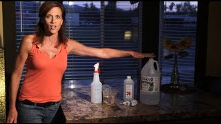 Saving Money In The Home-e01 Diy Multipurpose Cleaner