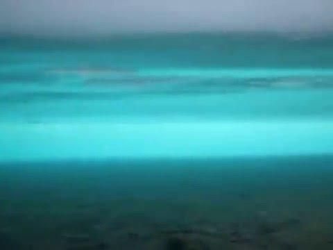 подводные съемки зимней рыбалки хариуса