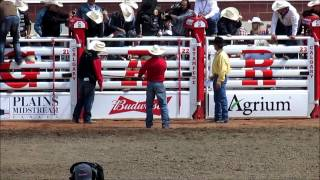 Bull Riding Calgary Stampede July 5 2015