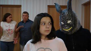 Что произошло 25 августа?! Почему Кролика никто не видит?