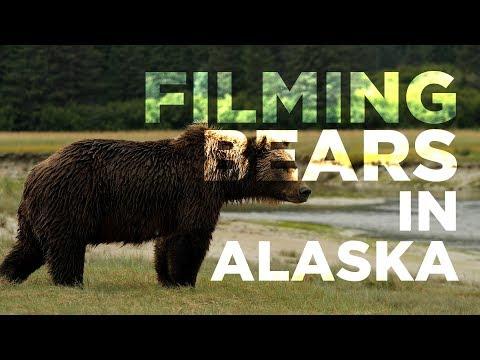 Filming Bears in Alaska   Hey.film podcast ep30